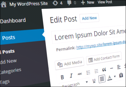 Editing And Deleting WordPress Posts