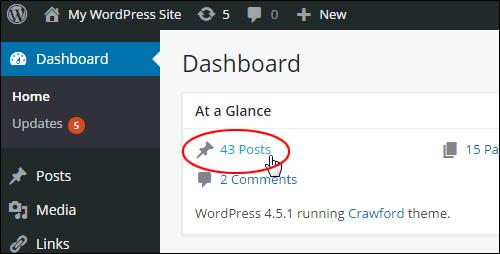 WordPress Dashboard > 'At a Glance' > 'Posts'