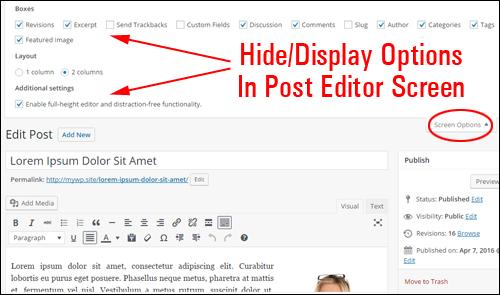 Edit Post area - Screen Options tab
