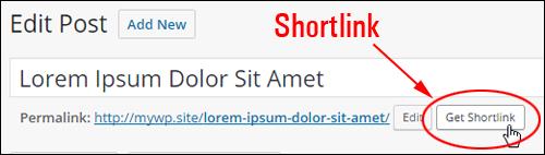 Edit Post section - Get Shortlink button