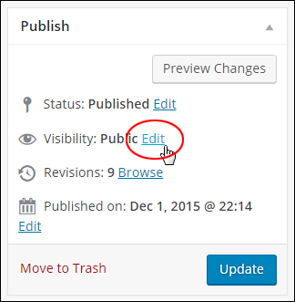 Publish post box - Visibility > Edit