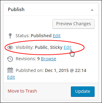 Publish box - Visibility settings