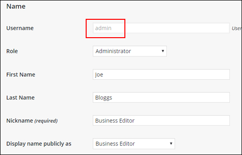 WP User Profile panel - Name settings - Username