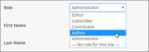 Profile area: Name section - User Roles
